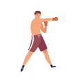 colorful portrait male boxer muscular man in vector image