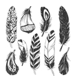 Feather set in Native American Indian style vector image