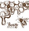 honey bees combs line art retro vintage