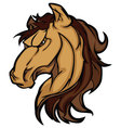 mustang stallion mascot cartoon image vector image vector image
