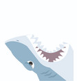 shark open mouth on a white background vector image vector image