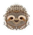 sloth head face portrait gray fur cartoon vector image