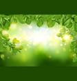 tree leaves border on green defocused background vector image