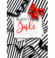 black friday sale and offers bow and ribbons vector image