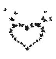 butterfly heart3 vector image vector image