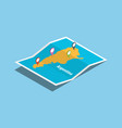 explore argentina maps with isometric style and vector image