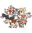 funny cows cartoon farm animals group vector image vector image