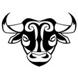 head of a bull vector image vector image