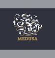 medusa of the gorgon vector image vector image