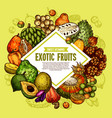 poster of exotic tropical fruits vector image vector image