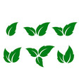 set of green leaves silhouettes vector image vector image