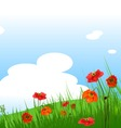 summer grassy field and poppies flowers background vector image vector image