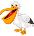 cartoon happy pelican vector image vector image