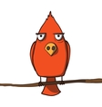 Funny red cartoon bird vector image vector image