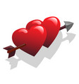 two hearts and arrow vector image