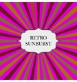with retro sunburst background vector image vector image