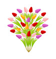 beautiful floral bouquet of tulips in the form of vector image vector image