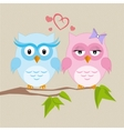 Couple of owls in love vector image vector image