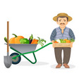 farmer with harvest in metal cart and wooden box vector image