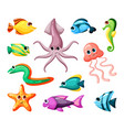 undersea world colorful flat vector image