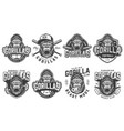 vintage sport teams logotypes set vector image