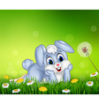 Cute little bunny on grass background vector image vector image