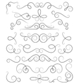 Decorative curls and swirls collection vector image vector image