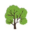 Fruit Tree Icon vector image vector image
