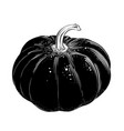 hand drawn sketch of pumpkin in black isolated vector image