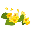 Hand drawn yellow blooms vector image vector image