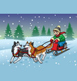 happy boy riding sleigh with his huskies dog vector image