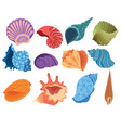 set cartoon seashells a collection sea vector image vector image