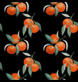 tangerine branches seamless pattern on black vector image