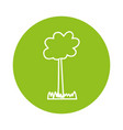 tree plant silhouette isolated icon vector image