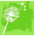 Watercolor graphic dandelion vector image vector image
