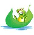 A smiling frog on the big leaf vector image vector image