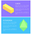 bright colors cuboid and octahedron templates vector image
