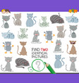 find two identical cats task for children vector image vector image