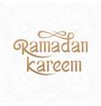ramadan kareem handwritten lettering with islamic vector image vector image