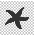 Sea star sign Dark gray icon on transparent vector image vector image