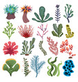 set algae collection cartoon algae vector image vector image