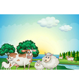 Sheeps cow and goat near the flowing river vector image vector image