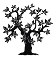 silhouette of spring tree vector image vector image