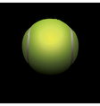 Tennis Ball in Shadows vector image vector image
