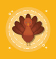 turkey animal cartoon vector image
