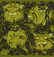 wild cats vector image