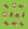 yoga dog poses set vector image vector image