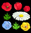 a set of flowers for registration vector image