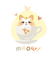 cute kitten sitting in a cup vector image vector image