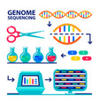 genome sequencing sheme human genome project vector image